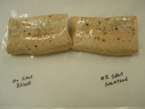 Salt_salmon_017