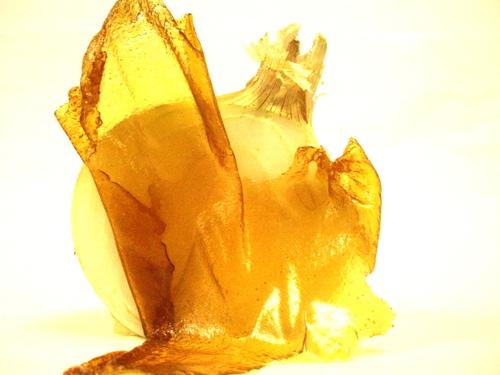 french onion taffy